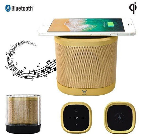 Daniu Brand 5W DS-670 NEW Wireless charger speaker Private model TWS function mini speaker Desktop speaker