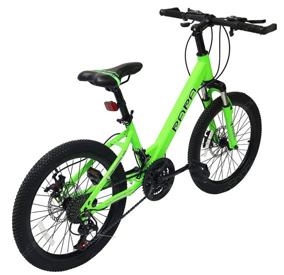 Papa Mountain Bike Green, PC20