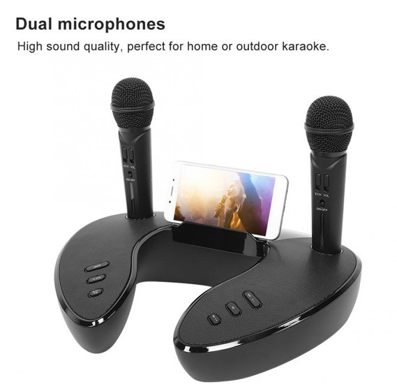 Wireless Dual Handheld Microphones ST2020 for Indoor and Outdoor Bluetooth Karaoke