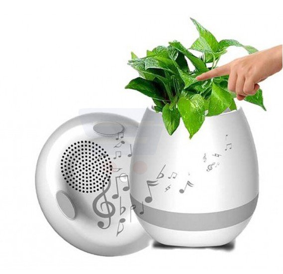 Eazy Kids Smart Musical Pod White