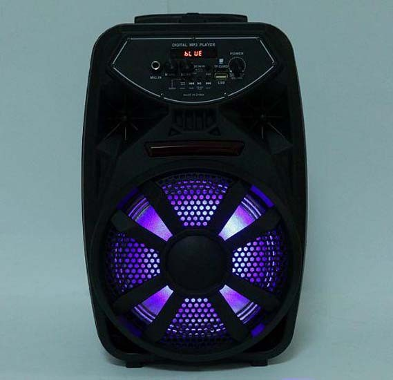 Portable Rechargeable 8 Inch Bluetooth Speaker with Mic Support Aux in, USB & TF Card, PK-09(L)