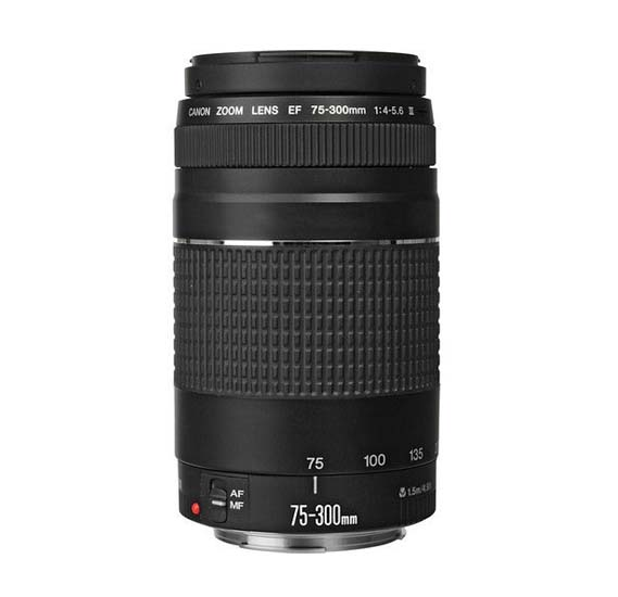 Canon EF 75-300mm Lens for Canon SLR Cameras F4.0-5.6 III