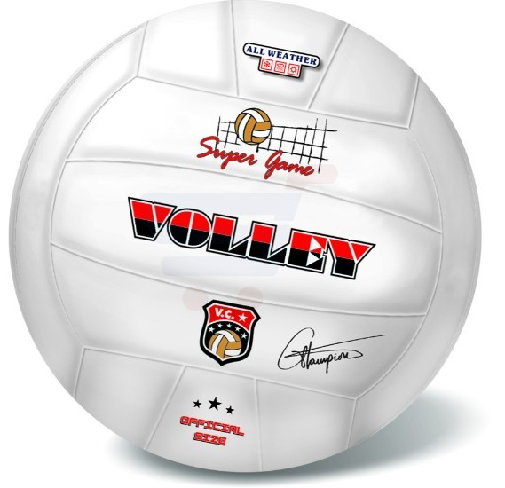 Starballs Sports Balls Volley Champions 21 cm - 10-017