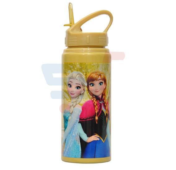 Frozen Power Sisters Metal Water Bottle MWB - FRPO07179