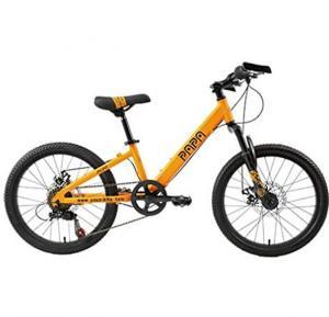 Papa Mountain Bike Orange, PC20