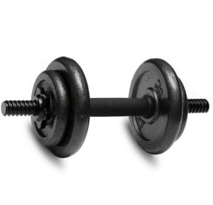 Grey Hammerton Dumbell 18 Kg Black Without Cover