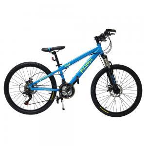Papa Mountain Bike Blue, PA24