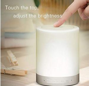 Chtoo Touch Lamp with Portable Bluetooth Speaker
