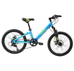 Papa Mountain Bike Blue, PC20