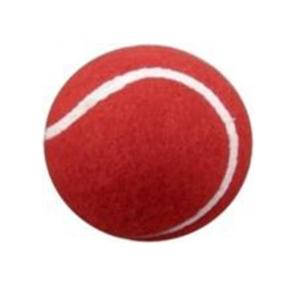Syndicate Cricket Tennis Ball Red, 11600167