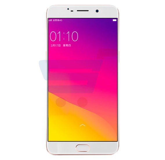 Lenosed M5 Smartphone 4G LTE, Android 6.0 Marshmallow, 5.0 inch HD Display, 2GB RAM, 16GB Storage,Dual Camera, WiFi, FM, Bluetooth- White