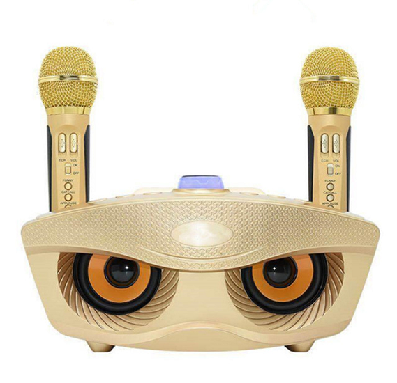 Bluetooth Karaoke Speaker SD-306 | Strange Designs Give 2 Microphones  color-Gold