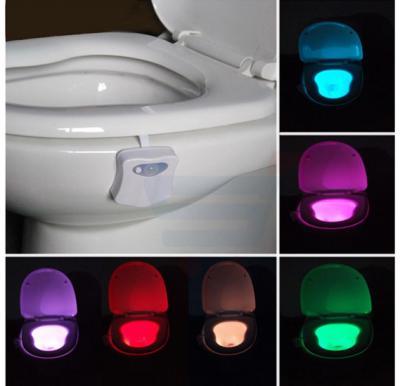Light Owl Colorful LED Toilet Sensor Light