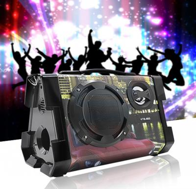 Karaoke Wireless Portable Bluetooth Speaker, KTS-663