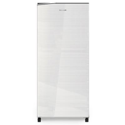 Panasonic NR-AF176SSAE Single Door Refrigerator 165L, Silver