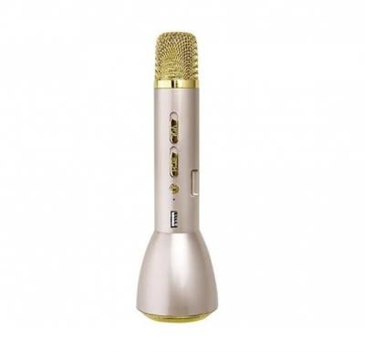 Bluetooth Karaoke Portable, Speaker With Microphone,In-built Powerbank-Gold