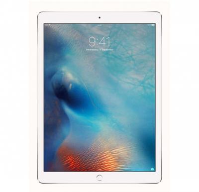 Apple iPad Pro 32GB,12.9 Inch LED