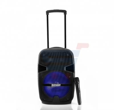Krypton Portable and Rechargeable Speaker KNMS5035
