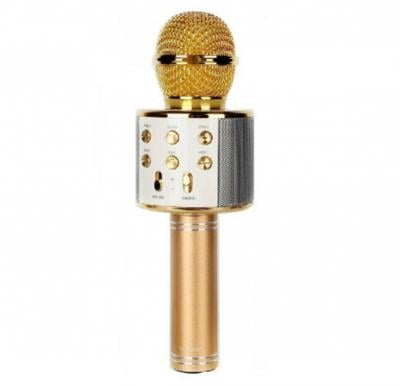 Wster Wireless Microphone Assorted Colour WS-858