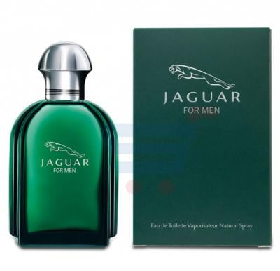 Jaguar Green Edt 100ml For Men
